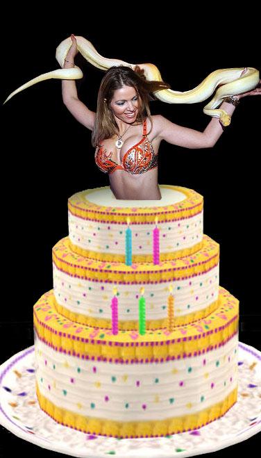 Danseres Taart Verjaardag Verassing Danser Danseressen Danseres
